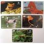 Série Animais Silvestres Cearenses (5 Cartões) Telemar