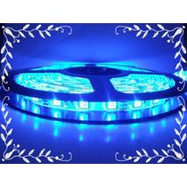 Fita Led 5050 Azul 24v Com Silicone Para Caminhão E Õnibus
