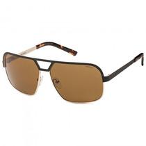Óculos Sol Colcci 503133402 Dourado Masculino - Refinado