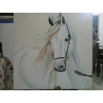 Quadro À Óleo Sobre Tela 70x70 Cavalo Branco