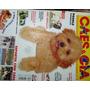 Revista Cães & Cia Nº 286 - Março/2003