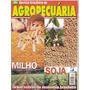 Agropecuária - Milho/ Soja. Grãos Nobres Da Economia Brasile