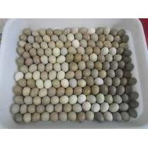 Ovos De Codorna Chinesa Galados (uma Duzia)