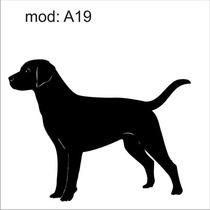 Adesivo A19 Cachorro Raça Labrador Cão Decoração Parede