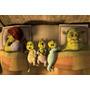 Painel Decorativo Festa Infantil Shrek Fiona Burro (mod5)
