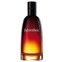 Dior Fahrenheit Masculino - Eau De Toilette 100ml