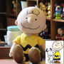 Boneco Charlie Brown Do Snoopy 36cm Pelúcia Pronta Entrega