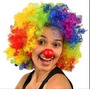 Peruca Para Carnaval Halloween Aniversário Palhaco Colorido
