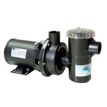Bomba Para Piscina Nautilus 3/4 Cv 110/220 V Motor Weg