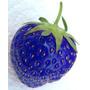 20 Sementes De Morango Azul - Frete Grátis