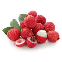 Mudas De Lichia - Mudas De Frutas Produzindo