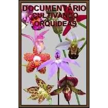 Fantástico Documentário Cultivando Orquídeas Em Cd + Brindes