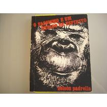 Livro - O Fascismo É Um Estado De Espírito - Nelson Padrella