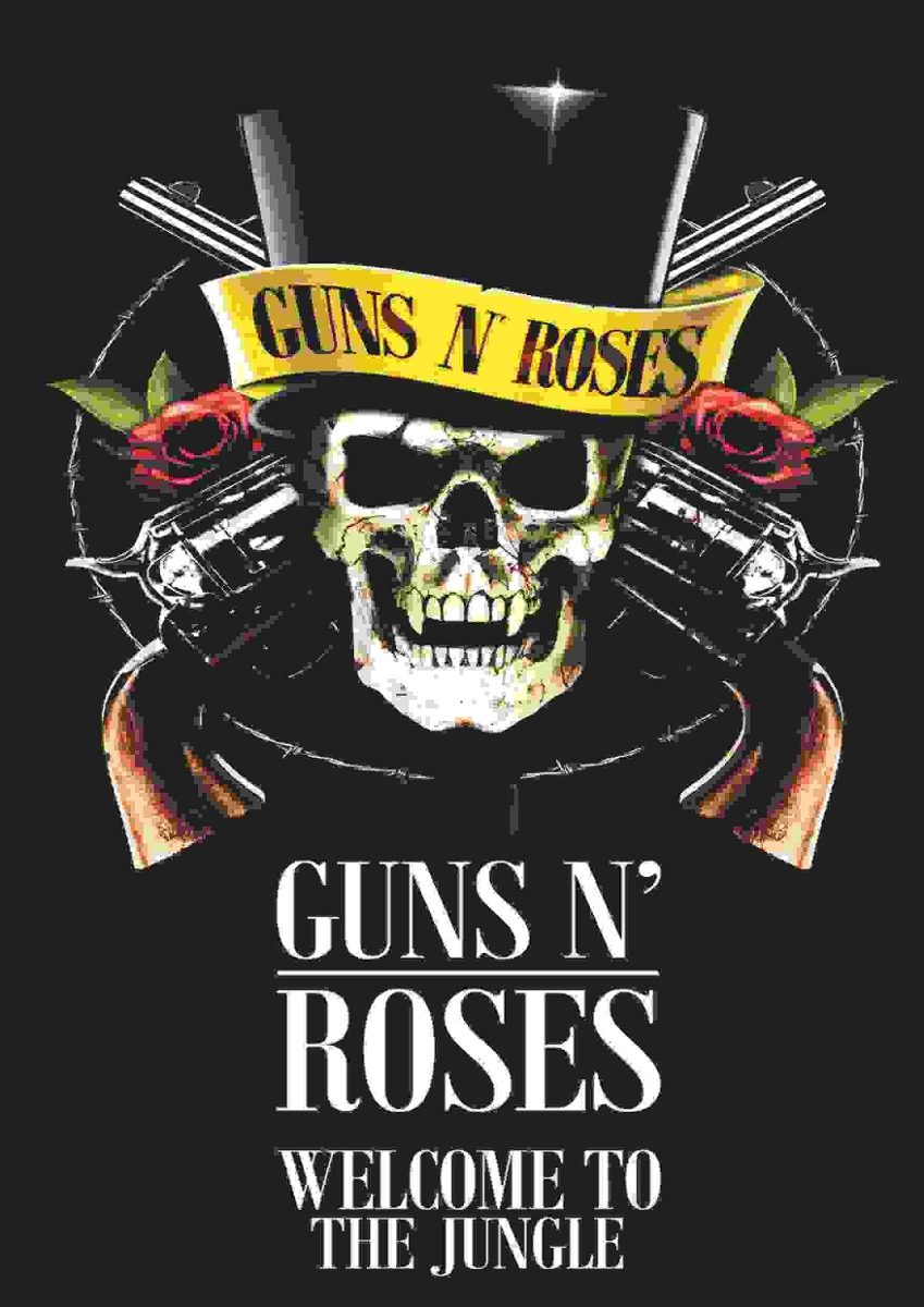 Poster de Rock Banda Guns N'