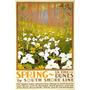 Primavera Nas Dunas Flores Chicago Usa Vintage Poster Repro