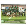 Poster Palmeiras No Brasileiro De 1997 Placar Especial