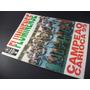 Fluminense - Campeão Carioca De 1995 - Poster