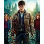 Pôster Harry Potter E As Relíquias Da Morte - Parte 2