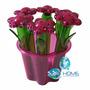 Porta Condimentos Temperos Vaso De Flores