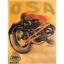 Moto Osa Motociclista Velocidade Poster Repro