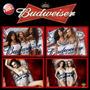 Quadros Decorativos Cerveja Budweiser Lindas Mulheres Moldur