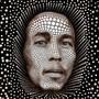 Quadro 3d Bob Marley Moldura Alumínio - Mleva Shop