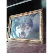 Quadro 3d Lobo Presente Barato Dia Das Mães Mais Em Conta