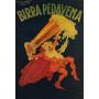 Cerveja Pedavena Bebida Tulipa Homem Poster Repro