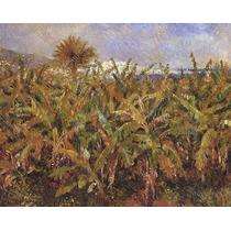 Campo De Bananeiras Pintor Renoir Na Canvas Repro