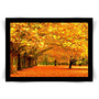 Pôster Com Moldura Preta Árvores No Outono Médio