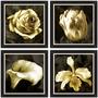 Quadro Floral Quarteto 36x36 Cm - Black Sala Quarto Escada