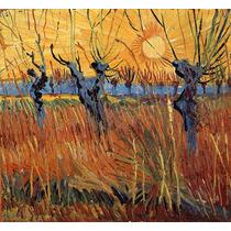 Campo Flores Sol Fazenda Reprodução De Van Gogh Na Tela