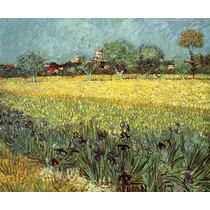 Campo Flores Plantacoes Sitio Reprodução De Van Gogh Na Tela