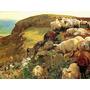 Ovelhas Na Costa Da Inglaterra Pintor Hunt Na Tela Repro