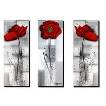 Trio De Quadros Decorativos Papoulas 40x105cm Cada