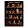 Placa Decorativa Beers Of The World Grande