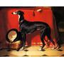 Cachorro Greyhound Whippet Corrida Art Landseer Tela Repro