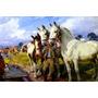 Cavalos Tomando Água Campo Fazenda Pintor Welch Tela Repro