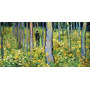 Undergrowth Couple Floresta Casal De Van Gogh Enorme Tela