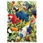 Quebra Cabeça Puzzle Aves + Bichos Na Varanda - Grow