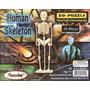 Esqueleto Humano Cortado A Laser 3d Puzzle Quebra Cabeça