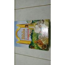Livro Fantástica Bíblia Ilustrada Da Família