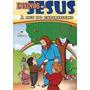 Livro Espírita Ensinos De Jesus À Luz Do Espiritismo