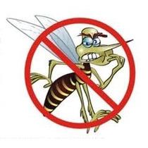Repelente Caseiro Contra Dengue ,pernilongo E Muriçoca