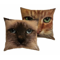 Capa Para Almofada Cats Gatos - Kacyumara