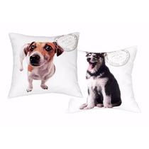 Capa Para Almofada Cachorros Dogs Husky Jack Russel Terrier