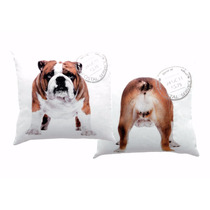 Capa Para Almofada Cachorros Bulldog Inglês Cabeça E Bumbum