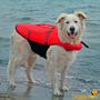 Colete Salva Vidas Para Cães - Trixie - M