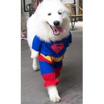 Roupa Fantasia Cachorro Gato Superman Tamanho Extra G (gg)