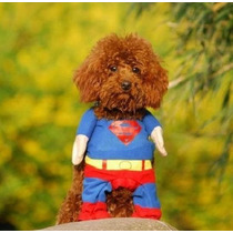Fantasia Roupa Cachorro Gato Super Man Super Homem